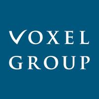 voxel_group_logo