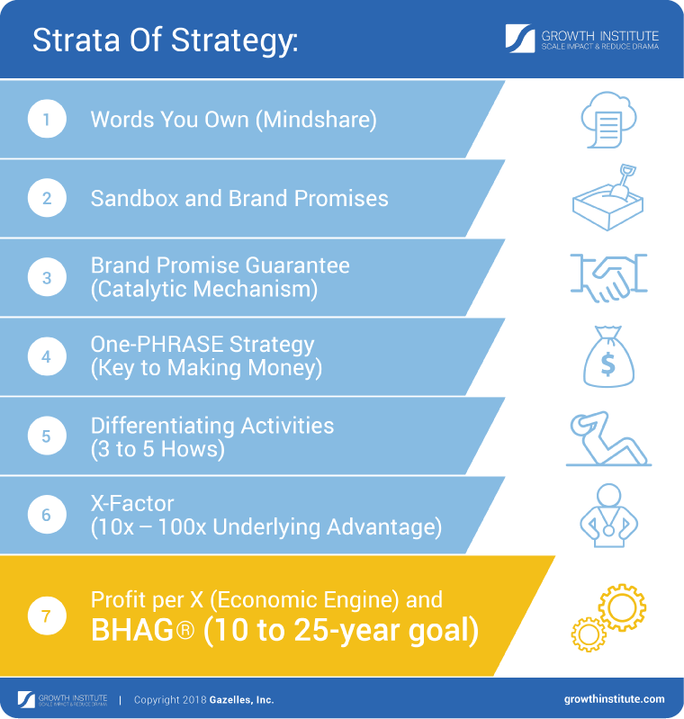 bhag_examples_strategy