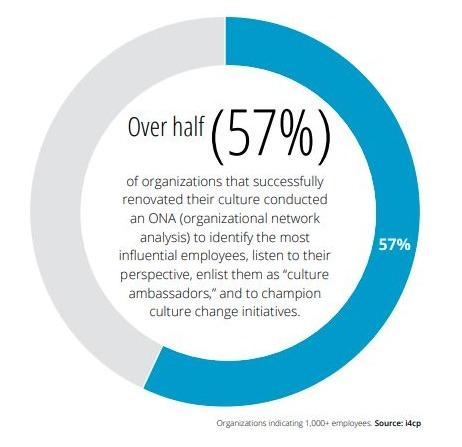 culure renovation organizational network analysis