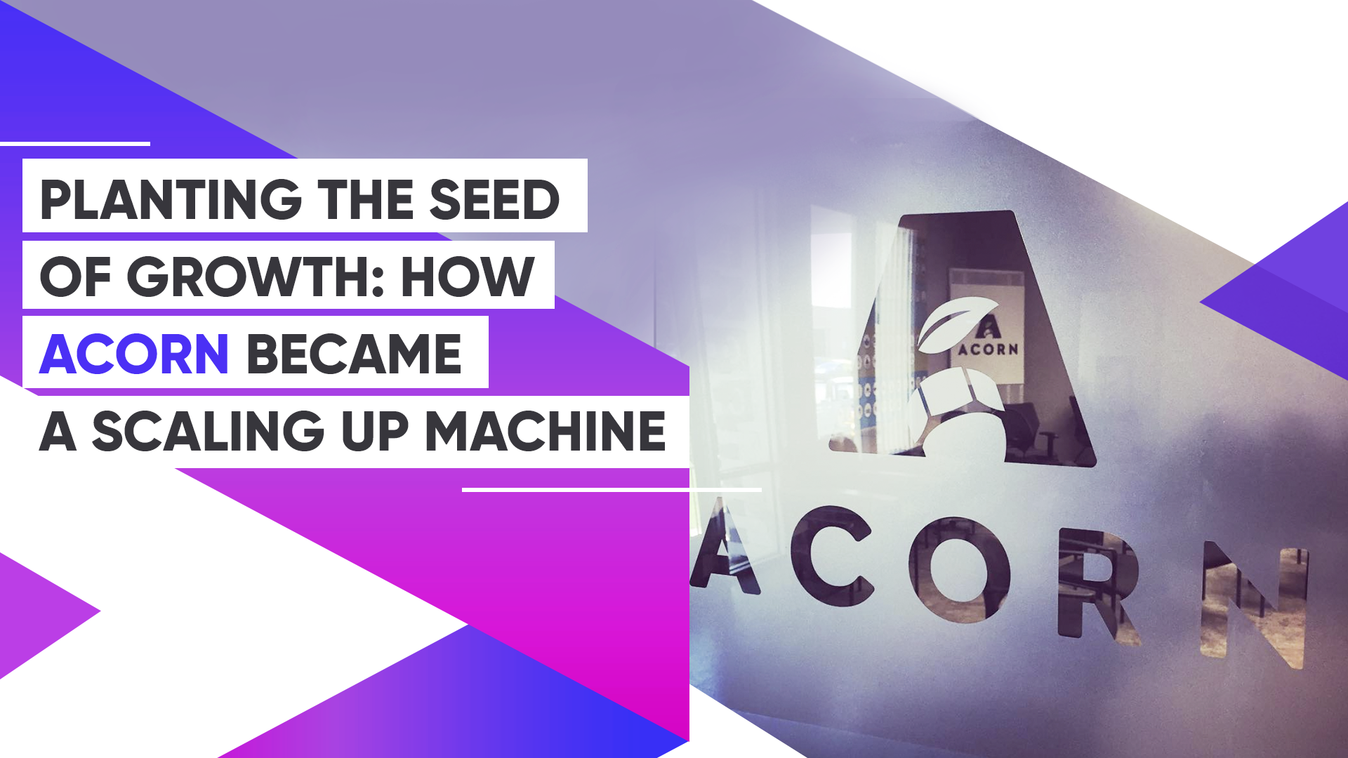 Planting The Seed Of Growth: How Acorn Became A Scaling Up Machine