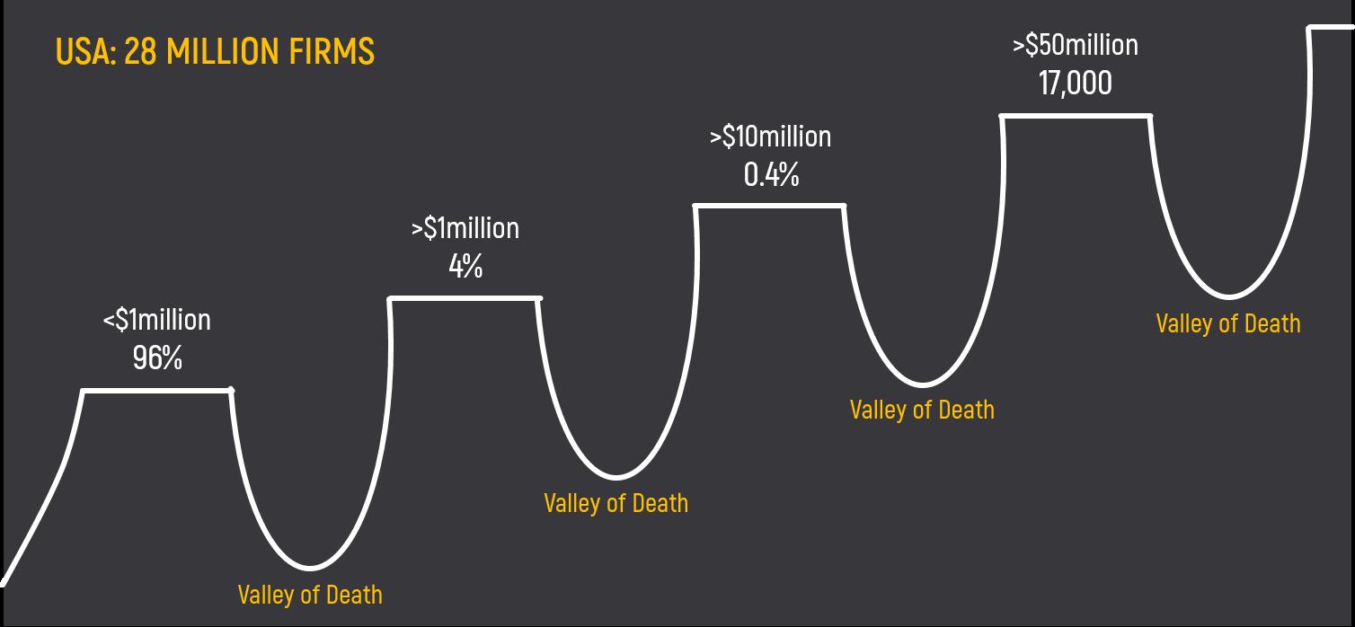 valleys of deaath of companies