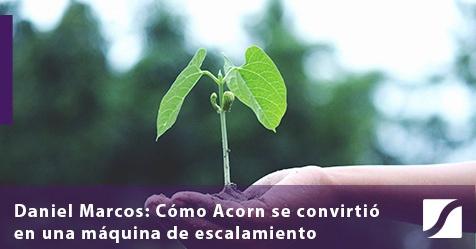Plantar la semilla de crecimiento: cómo Acorn se convirtió en una máquina de escalamiento